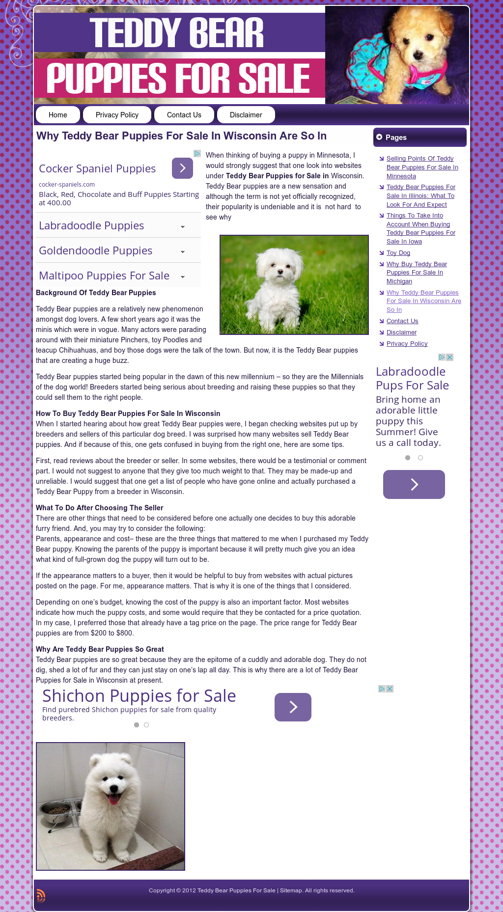 Teddy Bear Puppies For Sale Competitors, Revenue and