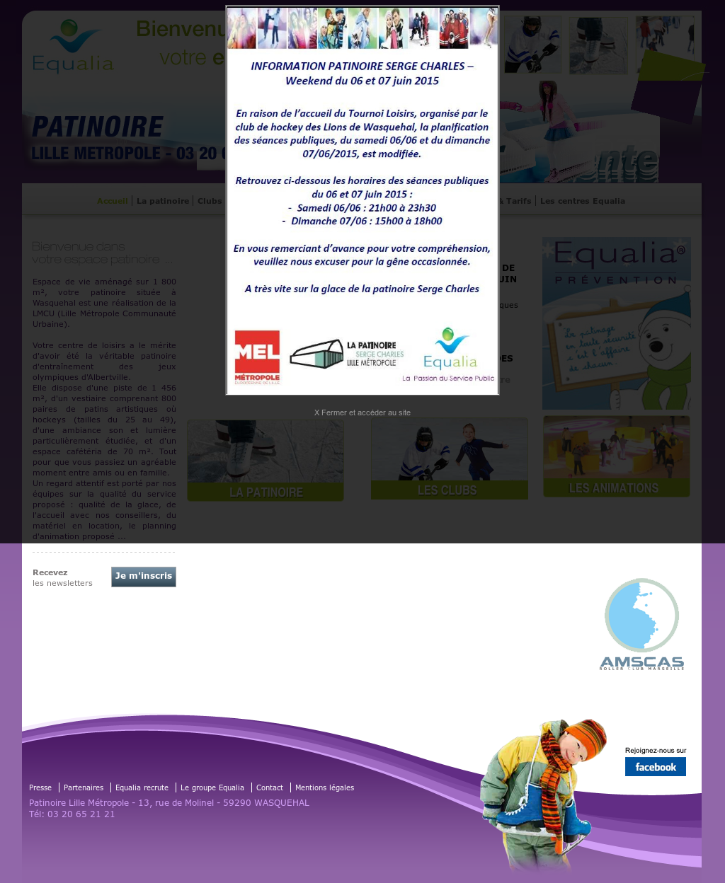 Patinoire Wasquehal Competitors Revenue And Employees Owler