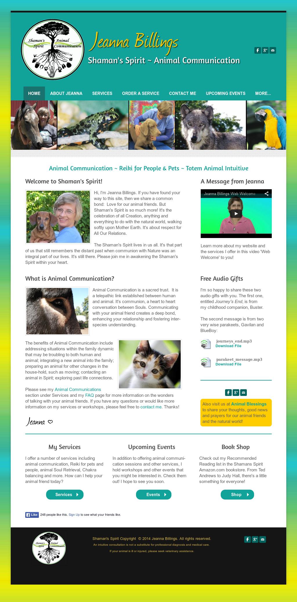 Shaman's Spirit Animal Communication Competitors, Revenue