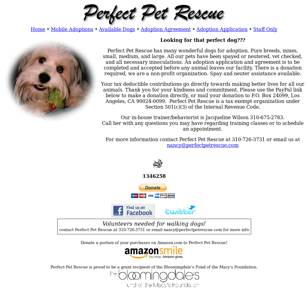 Perfect Pet Rescue Competitors Revenue And Employees Owler